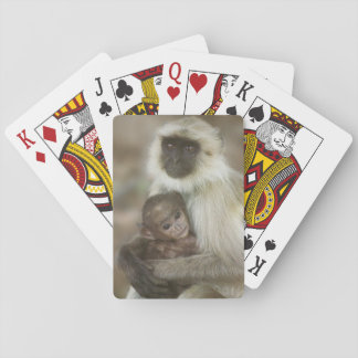 Black-face Langurs, mother with baby, in Playing Cards