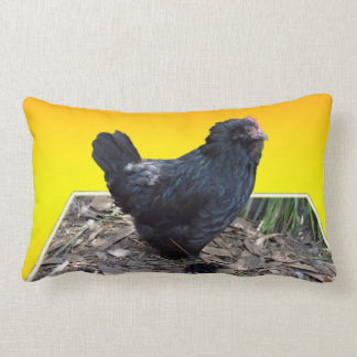 Black Fluffy Chicken On Yellow, Lumbar Cushion. Lumbar Cushion