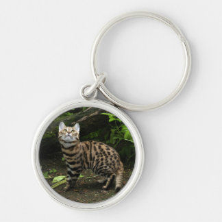 Black footed cat keychain