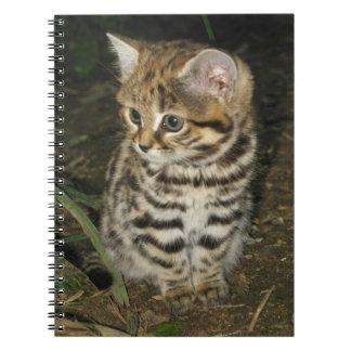 Black footed cat kitten spiral notebook