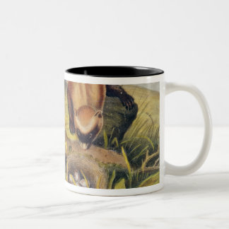 Black-footed Ferret Two-Tone Coffee Mug