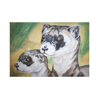 Black Footed Ferrets Wildlife Art Stretched Canvas Print