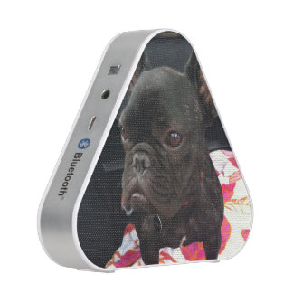 Black French Bulldog Bluetooth Speaker