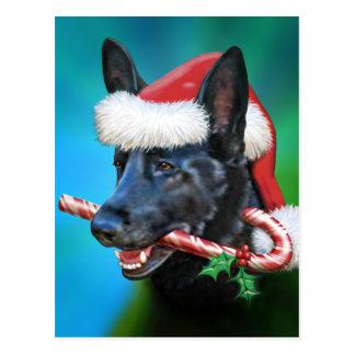 Black German Shepherd Christmas Postcard