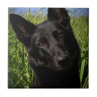black german shepherd.png small square tile
