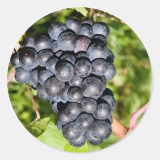 Black Grapes Classic Round Sticker