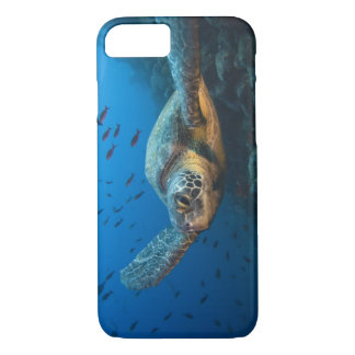 Black (Green) Turtle (Chelonia agassizi) off iPhone 7 Case