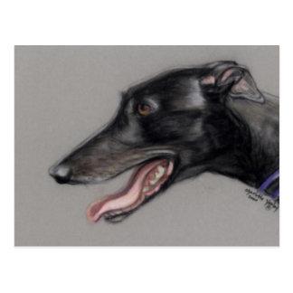 Black Greyhound Original Dog Art Postcard
