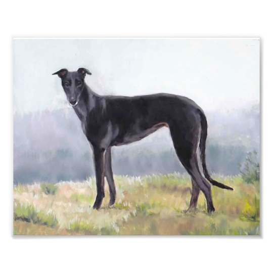 Black Greyhound Standing Dog Photo Print