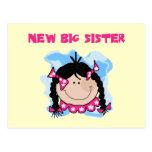 Black Hair New Big Sister  Tshirts and Gifts Postcard