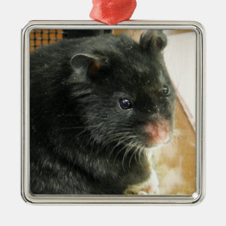 Black Hamster Photo Christmas Ornament