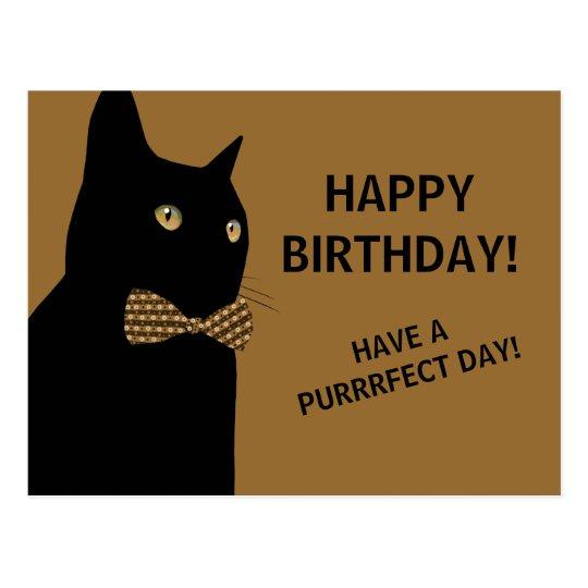 Black Happy Birthday Cat With A Brown Bow Tie Postcard Zazzle Co Uk