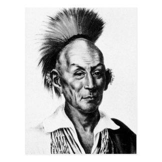 Black Hawk Sac Sauk Indian Chief Postcards