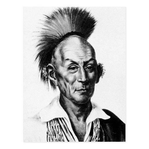 Black Hawk ~ Sac Sauk Indian Chief Postcards
