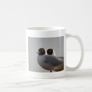 black-headed gull mugs