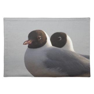 black-headed gull place mats