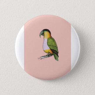 black headed parrot, tony fernandes.tif 6 cm round badge