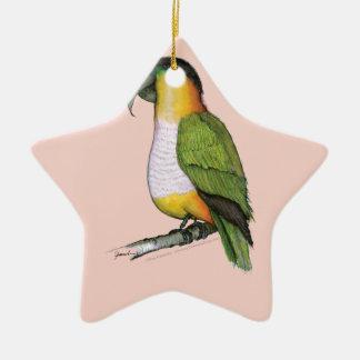 black headed parrot, tony fernandes.tif ceramic star decoration