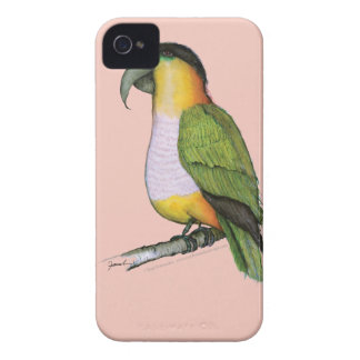 black headed parrot, tony fernandes.tif iPhone 4 case