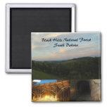 Black Hills National Forest Square Magnet