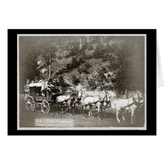 Black Hills Treasure Coach Vintage Greeting Card