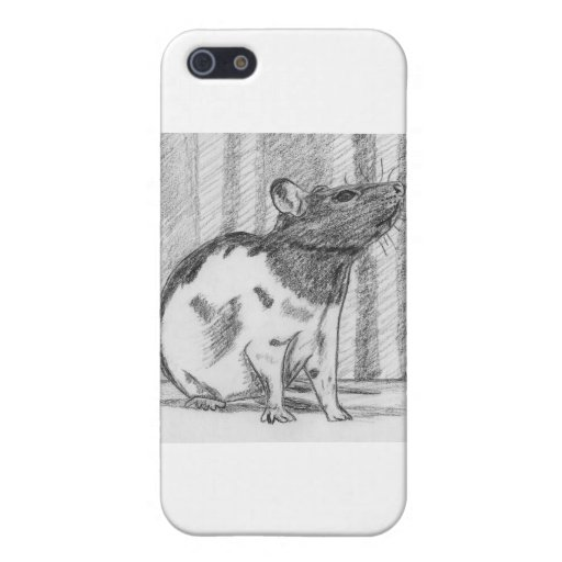Black Hooded Fancy Rat Cover For iPhone 5