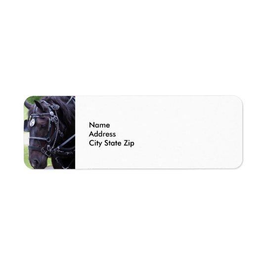 Black Horse 384