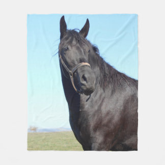 Black Horse And The Blue Sky Fleece Blanket