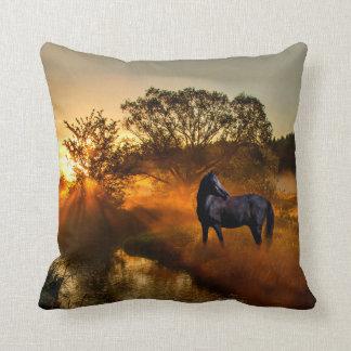 Black horse at sunset or sunrise cushion
