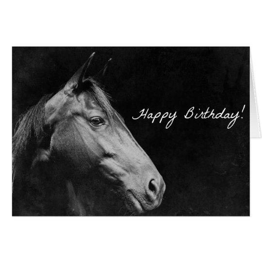 Black Horse Birthday Grunge Card