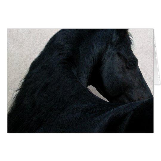 Black Horse - Friesian Note Card