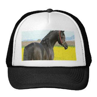 Black Horse Hats