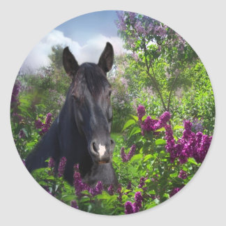 Black horse in lilacs round sticker