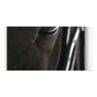 black horse personalized photo card