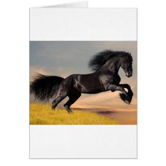 black_horse_running.jpg greeting card