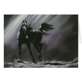 Black Horse Wisdom Card