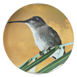 Black Hummer in Golden Sky Melamine Plate