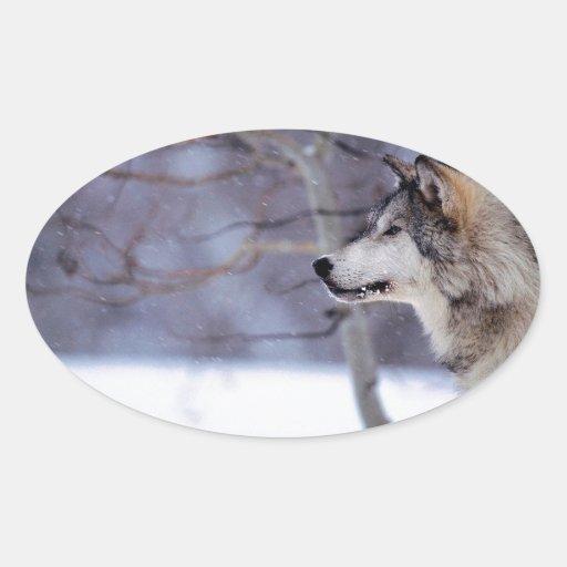 Black Husky Dog Products Oval Sticker