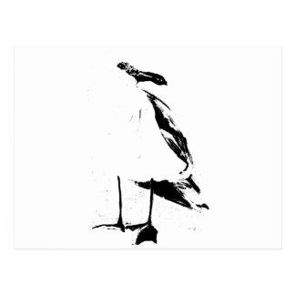 Black ink outline seagull postcard