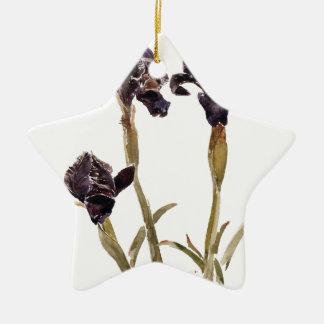 black iris of Jordan Ceramic Star Decoration
