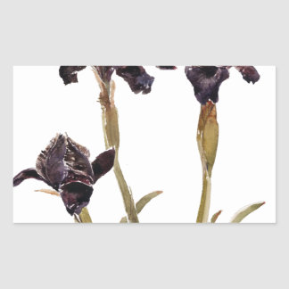 black iris of Jordan Rectangular Sticker