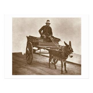 Black Jack, from 'Street Life in London', 1877-78 Postcard