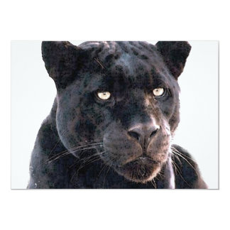 Black Jaguar Invitation