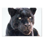 "Black Jaguar Invitation 5"" X 7"" Invitation Card"