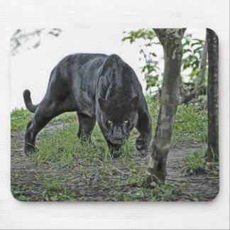 Black Jaguar Stalking Mousepad