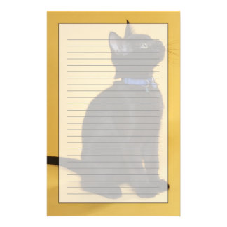 Black kitten in collar stationery