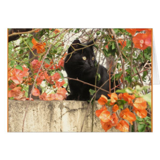 Black Kitten with Orange Flowers Card