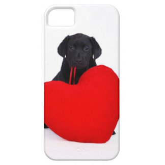 Black lab and heart case for the iPhone 5
