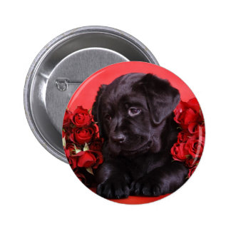 Black Lab and roses Buttons
