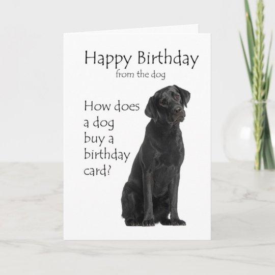 Yellow Labrador Retriever Sympathy Card Dog Greeting Cards Dog